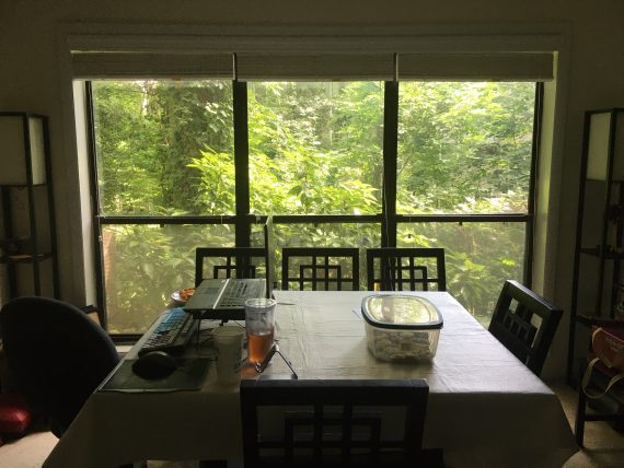 A dining room with a table at the center and three tall windows beyond it looking out into a green forest